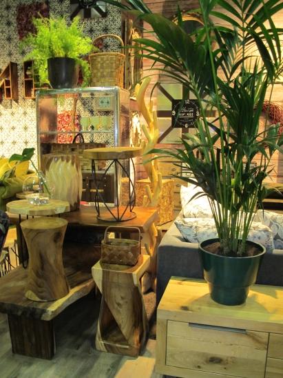 Ob Ranke, Farn Oder Zimmerblume   Pflanze Und Pflanzentopf Verfeinert Man  Jeden Einrichtungsstil