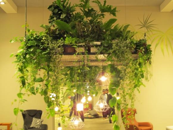Mit pflanzen und kr uter die k che und das esszimmer for Stylische pflanzen